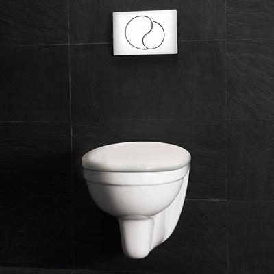 Toalett, komplett